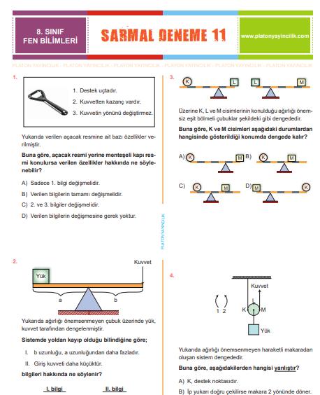 8. Sınıf Sarmal  Deneme 11