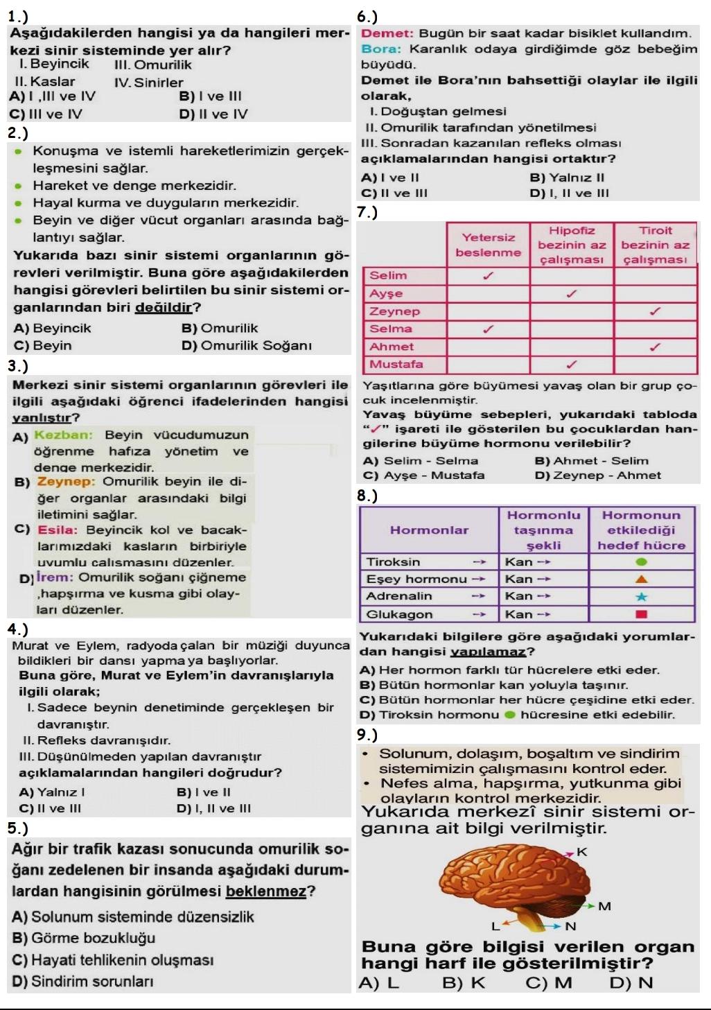 Denetleyici ve Düzenleyici Sistemler Testi (Cevap Anahtarlı)