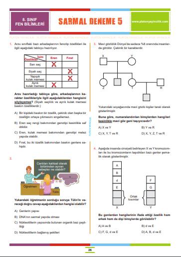 8.Sınıf Sarmal Deneme 5