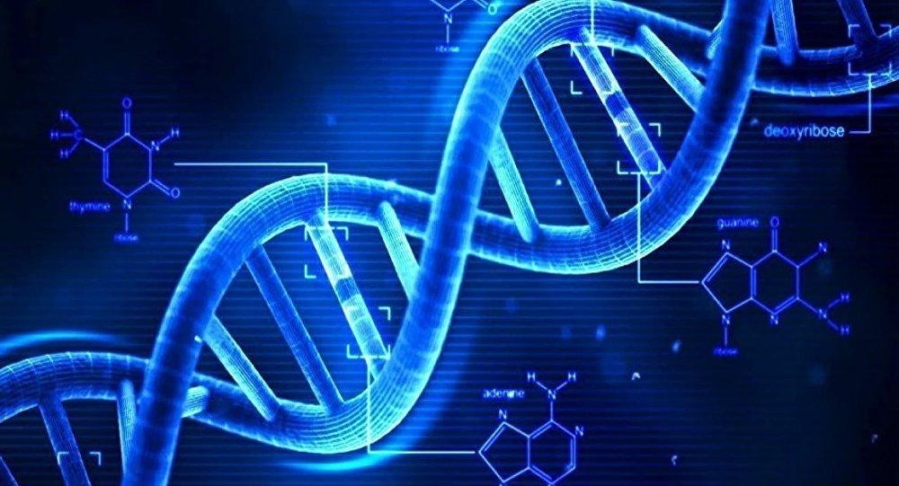 Bilim Adamları Programlanabilen DNA Tabanlı Bir Bilgisayar Oluşturmayı Başardı