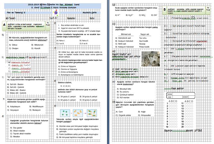 8. Sınıf Fen Bilimleri  2. Yönem 1. Yazılı Sınavı (Kolay)
